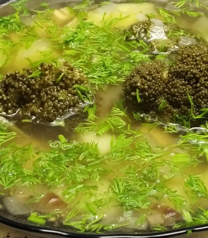 Рецепт куриного супа пошагово с фото