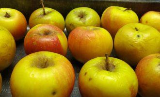 Яблоко в духовке